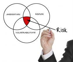 evaluare risc